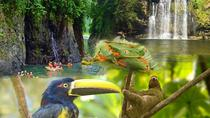 PRIVATE SLOTH ENCOUNTER WATERFALL AND COROBICI FLOURING TOUR, Liberia, Attraction Tickets