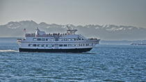 Seattle Harbor Cruise, Seattle, Dolphin & Whale Watching