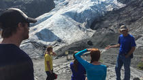 Exit Glacier Naturalist Hike, Seward, Hiking & Camping