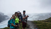 Guided Harding Icefield Trail Hike, Anchorage, Hiking & Camping