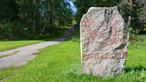 Viking History Half-Day Tour from Stockholm, Stockholm, Bus & Minivan Tours