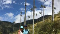 12-Day Best of Colombia Tour: Bogotá, Medellín, Cartagena, Santa Marta and Eje Cafetero,...