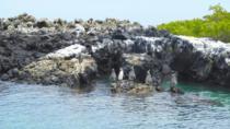 4 DAY BUDGET ISABELA TOUR, Galapagos Islands, Cultural Tours