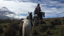 5-Day Adventure in The Andes and the Amazon from Quito, Quito, Multi-day Tours