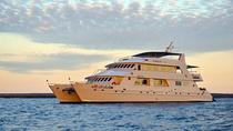 Crociera scontata Last-Minute Galapagos di 4-, 5, 7 o 8 giorni, Galapagos Islands, Multi-day Cruises