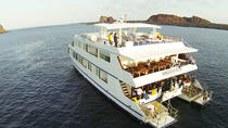 Millennium Cruise At Galapagos Islands, Guayaquil, Private Sightseeing Tours