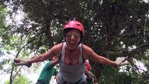 Mindo Zip Lining, Butterfly Farm and The Hummingbirds Shared Tour from Quito, Quito, Ziplines