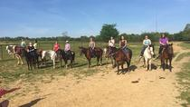 Memphis Trail Ride by Horseback, Memphis, Horseback Riding