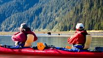 Half-Day Tonsina Creek Kayaking Adventure from Seward, Seward