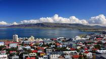 Reykjavik Shore Excursion: Reykjavik Sightseeing Tour by Minibus, Reykjavik, Ports of Call Tours