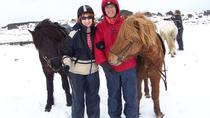 Viking Horse-Riding Tour and Blue Lagoon Including Admission Fee, Reykjavik, Attraction Tickets