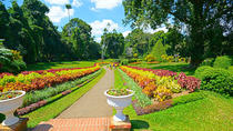 2 Day Private Tour - Nuwara Eliya -Kandy, Colombo, Private Sightseeing Tours