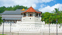 Discover Kandy -Spice Garden visit Tea Factory and Kandy city tour (All-Inclusive Private Day Trip ...