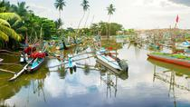 Explore Negombo - Muthurajawela (All-Inclusive Private Day Trip From Colombo), Colombo, Private Day...