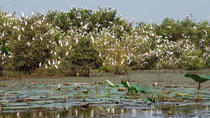 Mekong Delta Tours 3days - CaiBe Vinh Long ChauDoc CanTho, Mekong Delta, Multi-day Cruises