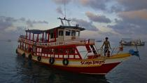 Diving Trip at Koh Tao from Koh Samui for certified divers, Koh Samui, Scuba Diving