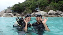PADI Scuba Diver course for beginners Two days one night accommodation included, Koh Samui, ...