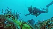 Discover Scuba Diving in Fajardo, Fajardo, Scuba Diving