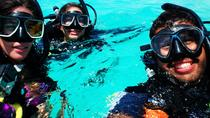 Discover Scuba Diving in San Juan, San Juan, Scuba Diving