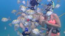 San Juan Beach SNUBA Experience, San Juan, Other Water Sports
