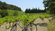 Private Guided Bike Tour Around L'Isle sur la Sorgue from Avignon, Avignon, Custom Private Tours