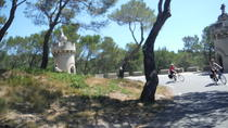 Private Guided Bike Tour Around Saint Rémy and the Provencal Countryside from Avignon, ...