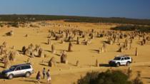 1-Day Pinnacles and Yanchep Tour from Perth including Fish and Chips Lunch, Perth, Cultural Tours