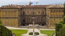 Private Tour des Palazzo Pitti: Pracht der königlichen Residenz, Florence, Private Sightseeing Tours