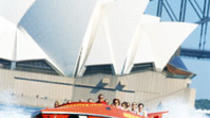 Sydney Harbour Jet Boat Thrill Ride: 30 Minutes