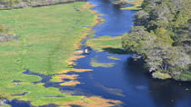 Busch Gardens and Alafia River Wildlife Helicopter Tour, Tampa, Helicopter Tours
