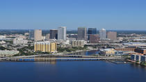 Downtown and Tampa Bay Helicopter Tour, Tampa, Dolphin & Whale Watching