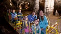Shore Excursion to Postojna cave, Koper, Ports of Call Tours