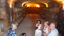 Wine lovers tour, Lecce, Food Tours