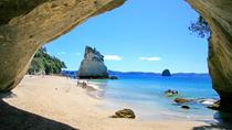 Full-Day Coromandel Tour from Auckland, Auckland, Day Trips