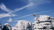 Private Hiking Tour to El Torcal from Marbella or Malaga, Malaga, Hiking & Camping