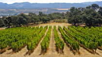 Private Wine Tasting and Tapas in Winery Including a Visit to Ronda city, Malaga, Wine Tasting & ...