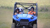 Waterfall Picnic Tour and Off-road Adventure in Kauai, Kauai, Helicopter Tours
