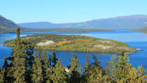 Half-Day Yukon Sightseeing Shore Excursion from Skagway, Skagway, Ports of Call Tours
