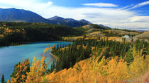 Skagway Shore Excursion: Yukon Discovery Tour, Skagway, Ports of Call Tours