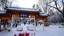 Day Trip to Nami Island and Gangchon Elysian Ski Resort from Seoul, Seoul, Day Trips