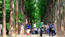 Full Day Nami Island and Petite France Tour from Seoul, Seoul