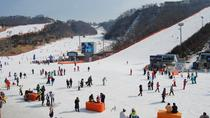 Full-Day Ski Package with Transportation from Seoul, Seoul, Ski & Snow