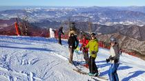 Snow or Ski Day Trip to Yongpyong or Phoenix Park Resort from Seoul , Seoul, Ski & Snow