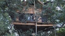 3 Day Kruger Tree House Safari, Johannesburg, Cultural Tours