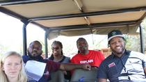 3 Hour Pilanesberg Afternoon Open Vehicle safari drive (Self drive), North West, Cultural Tours