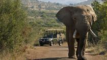 3 Hour Pilanesberg Morning Open Vehicle safari drive (Self drive), North West, Cultural Tours