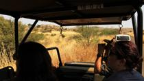 Full-Day Pilanesburg Nature Reserve Tour, Johannesburg, null