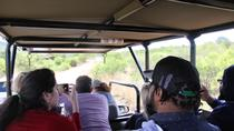 Full Day Ultimate Pilanesberg National Park Safari, Johannesburg