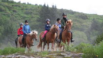 Horseback Riding Tour from Reykjavik, Reykjavik, Horseback Riding