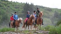 Icelandic Horseback Riding Tour from Reykjavik, Reykjavik, Horseback Riding